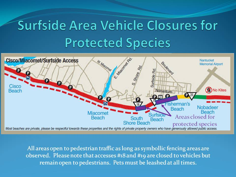 Surfside Area Vehicle Closures for Protected Species