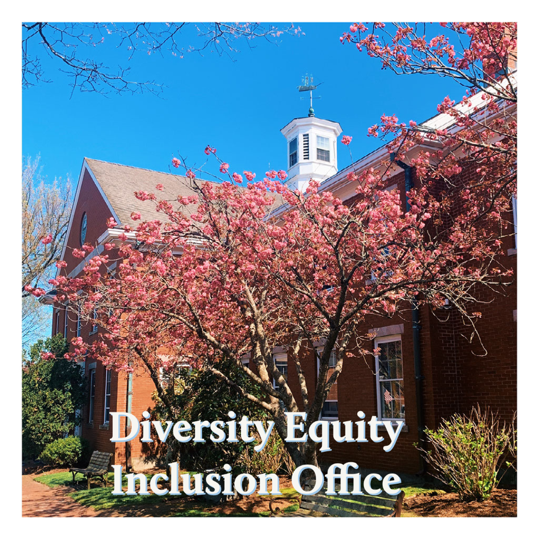 Diversity Equity Inclusion Office