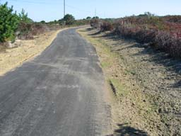Paved Path October 2012